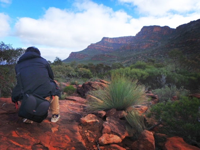 Photographer capturing Arkaroo Rock Flinders Ranges, South Australia