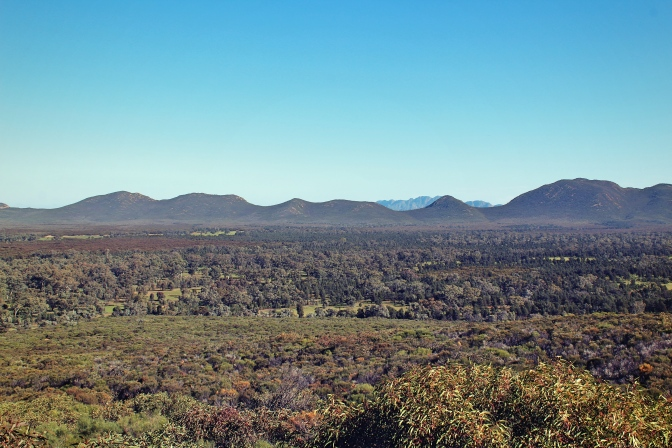 View from Wangara lookout, Wilpena Pound