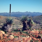 Roaming the Flinders Ranges: Wilpena Pound to Blinman