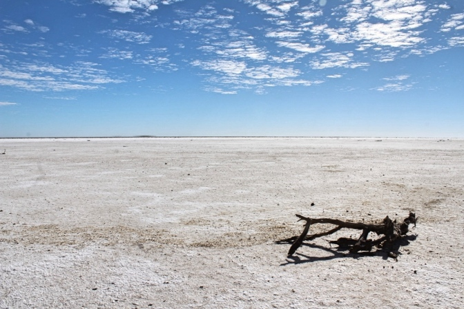 Salt flats, Lake Eyre South, South Australia