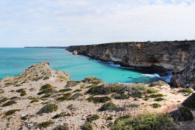 Head of the Bight, South Australia