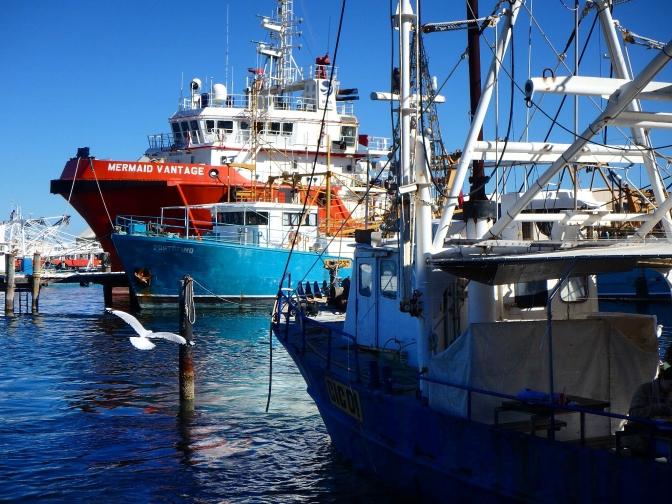 Trawler, Fremantle marina, Perth Western Australia
