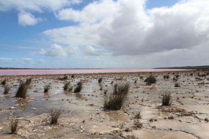 Pink Lake, Kalbarri Western Australia