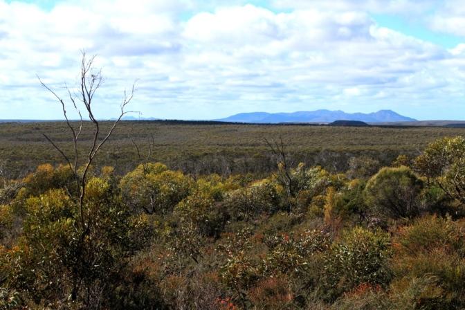 Barren Mountain range, Fitzgerald National Park, Western Australia