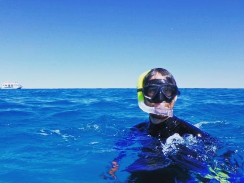 Snorkeller, Ningaloo Reef, Coral Bay, Western Australia