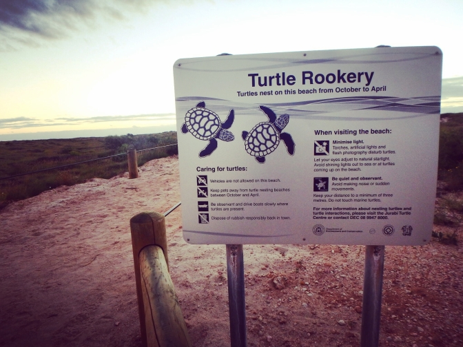 Turtle rookery sign, Cape Range National Park, Western Australia