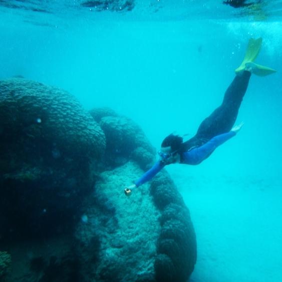 Duck dive, Ningaloo Reef, Western Australia