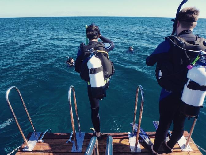 Diver entering water, Ningaloo Reef, Western Australia