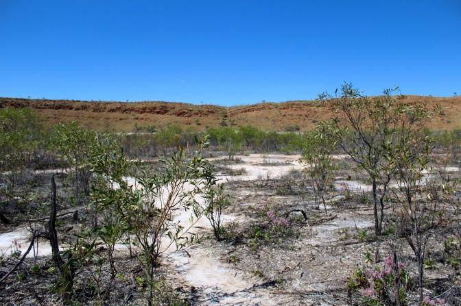 Bottom of Wolfe Creek Meteorite crater, Western Australia