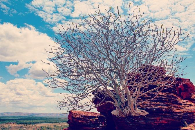 Kelly's Knob, Kununurra, Western Australia
