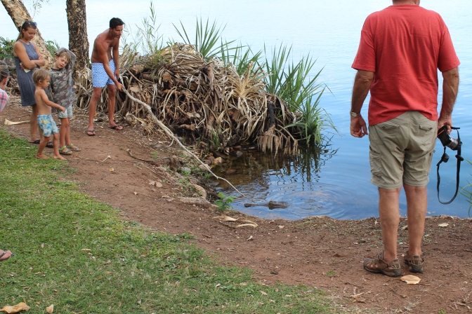Visiting the local crocodile at Lake Kununurra, Western Australia