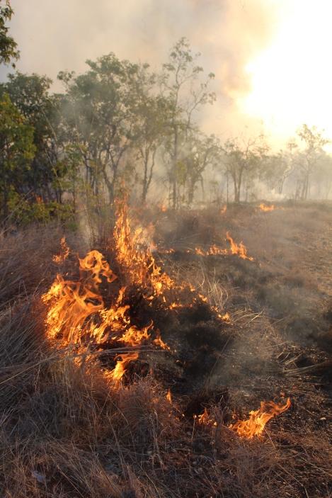 Bushfire, Katherine, Northern Territory