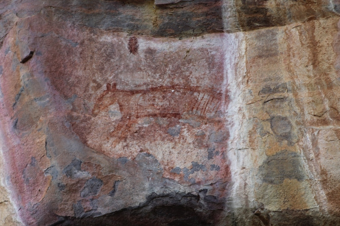 Thylacine rock art at Ubirr, Kakadu National Park, Northern Territory