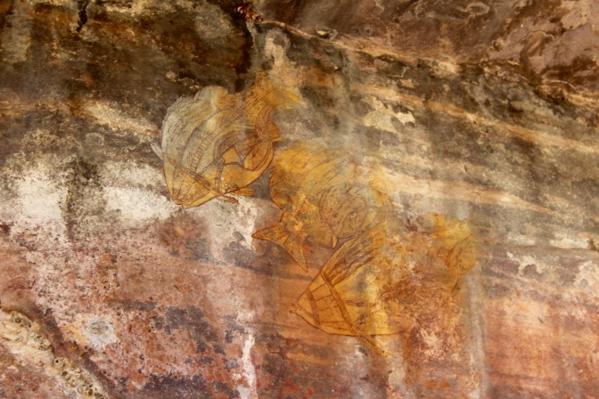 Barramundi rock art at Ubirr, Kakadu National Park, Northern Territory