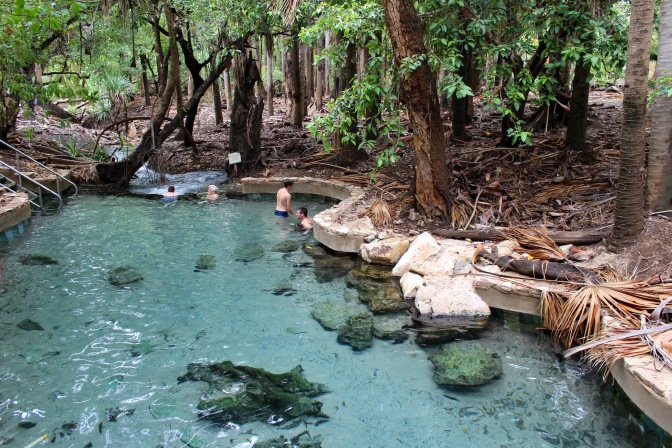 Thermal pool Mantaranka Springs Northern Territory