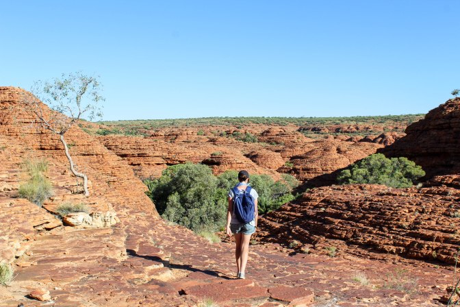 Sandstone domes, King's Canyon, Northern Territory, Australia