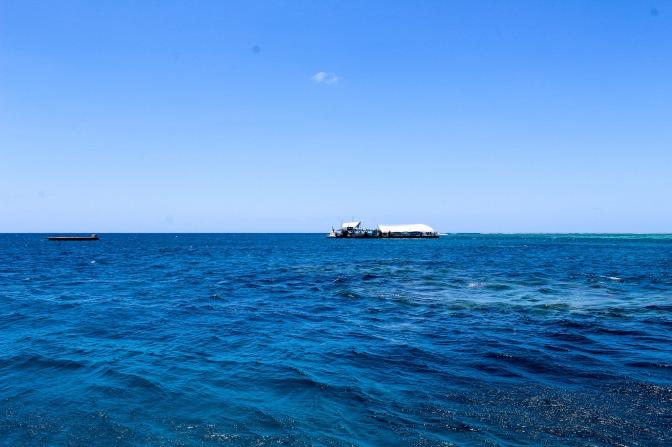 Dive post, Great Barrier Reef, Queensland