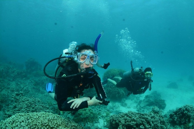 Divers underwater, Great Barrier Reef, Queensland