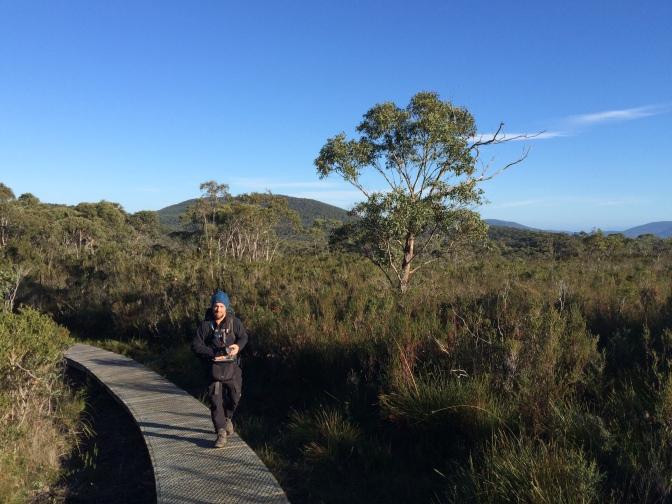 Three Capes Track boardwalk, Tasmania, Australia