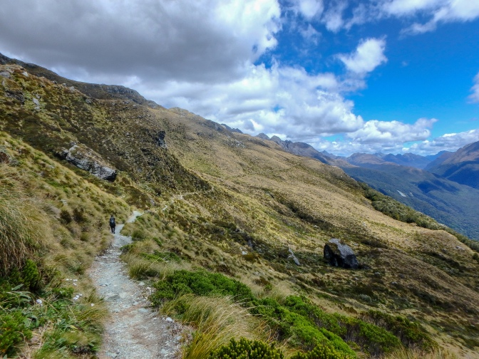 Mountain path, Routeburn Track, New Zealand,